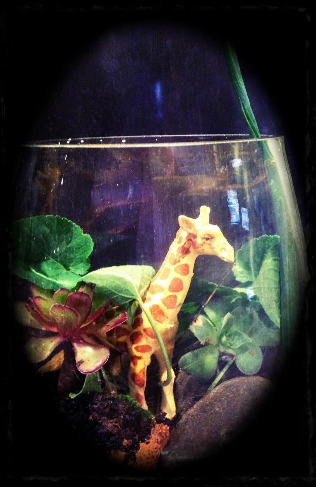 Giraffe terrarium
