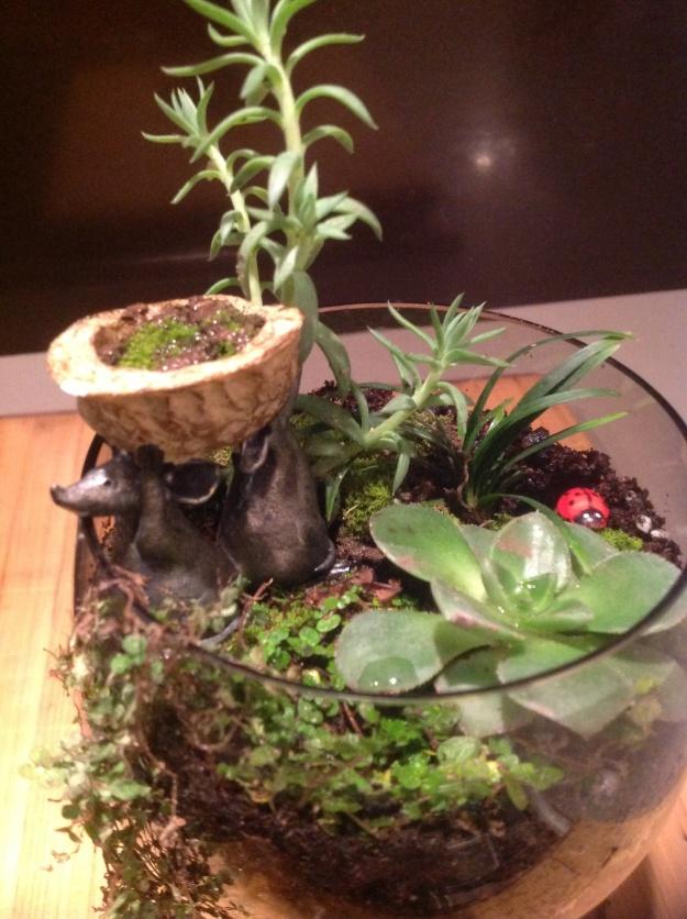 the nutcracker terrarium